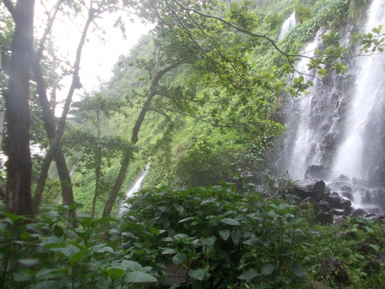 Anse des Cascades. Réunion Island'